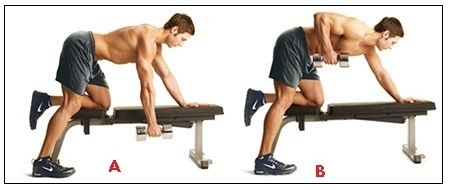 How to Strengthen your Rhomboid Muscles? Stretches and ...