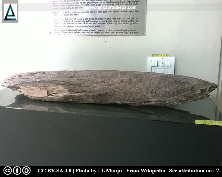 A pointed wood fragment found during the conservation of the pond has been placed in the premises of Udugampola Pradeshiya Sabha