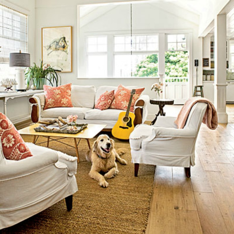 Coastal home how to guide make your coastal space kid - Pet friendly living room furniture ...