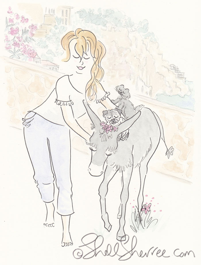 Illustration : Sweet Donkey, Pug & Cat Ride at Amalfi © Shell-Sherree