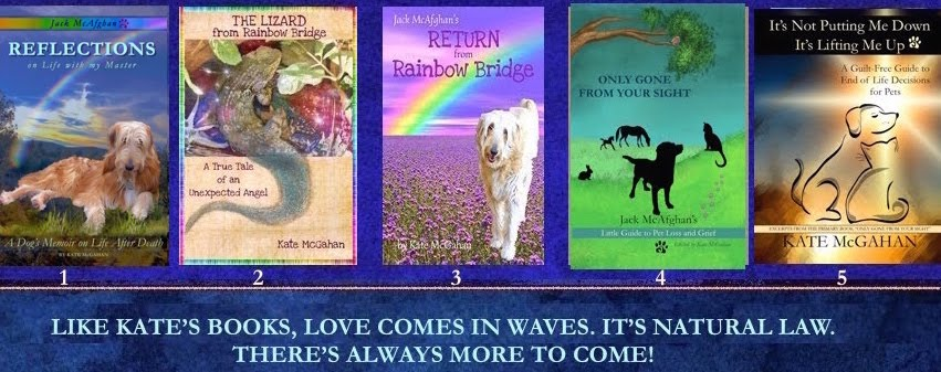 Gifts from Rainbow Bridge
