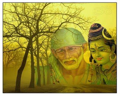 Sai Baba Helped Me Celebrate My First Shivratri Sai Devotee