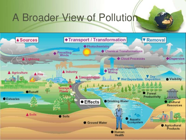 impact of pollution on natural resources and health Air pollution refers to the release of pollutants into the air that are detrimental to human health and the planet as a whole the clean air act authorizes the us environmental protection agency.
