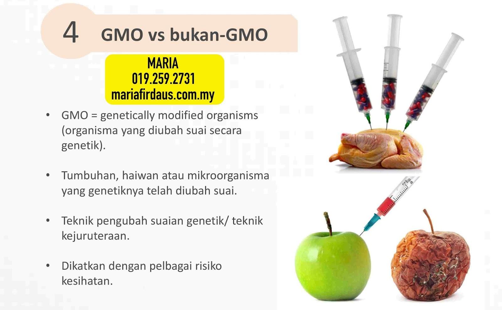 Berbagai Sumber Protein untuk Vegetarian