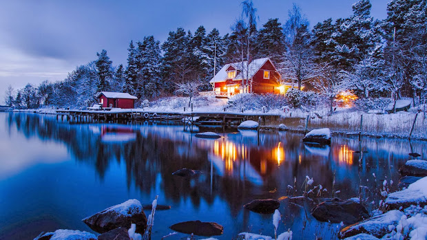 Beautiful Country Winter Landscape