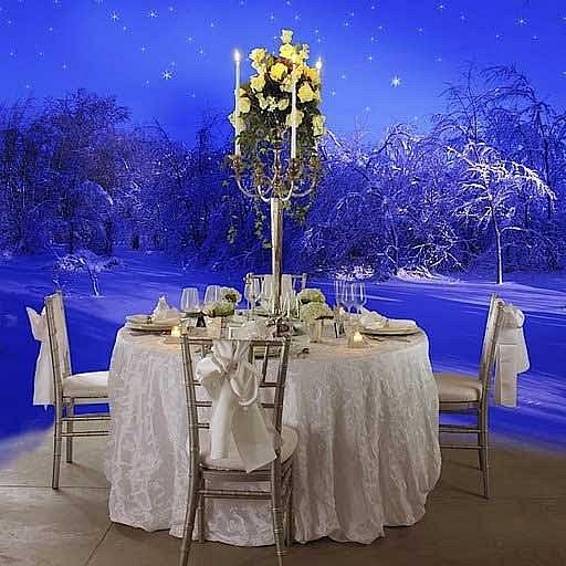 Best Wedding Idea: Natural Winter Wedding Decorations