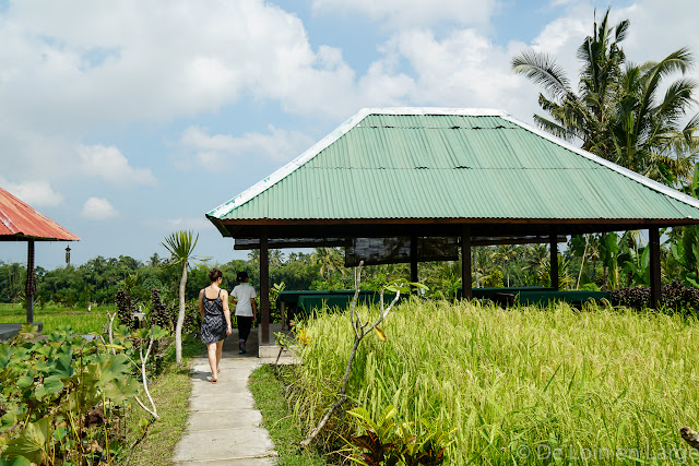 Pangkon Bali - Ubud - Bali