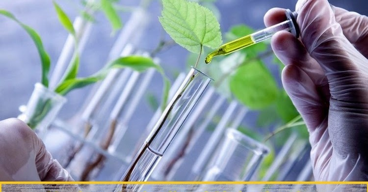 which is not a role of chemistry in modern agriculture