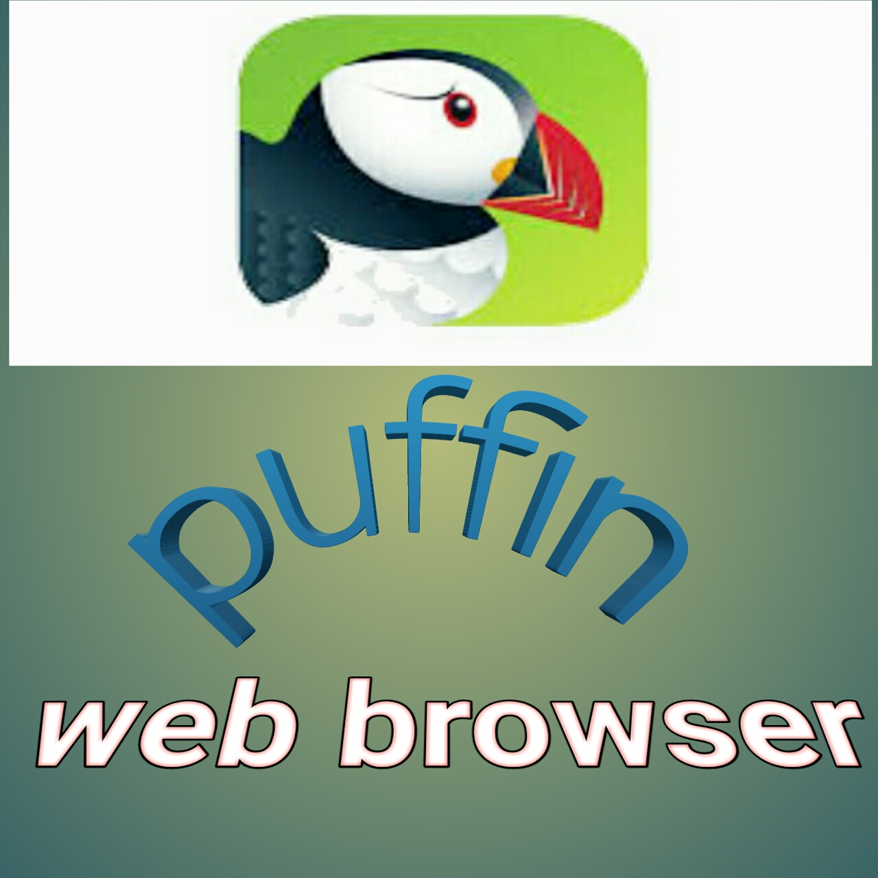 Puffin Web browser Android super fast internet access