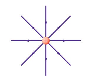 حل أسئلة تقويم الفصل السادس المجالات الكهربائية العلم نور
