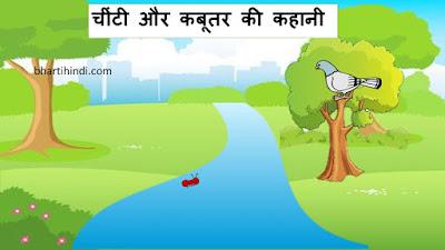 चींटी और कबूतर की कहानी - chiti aur kabootar story in hindi