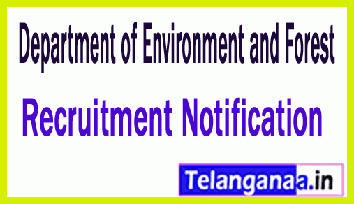 Department of Environment and Forest Recruitment
