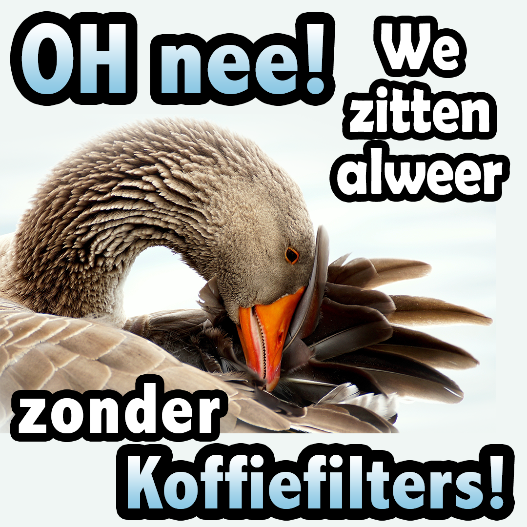 zonder koffiefilters the sassy classy me