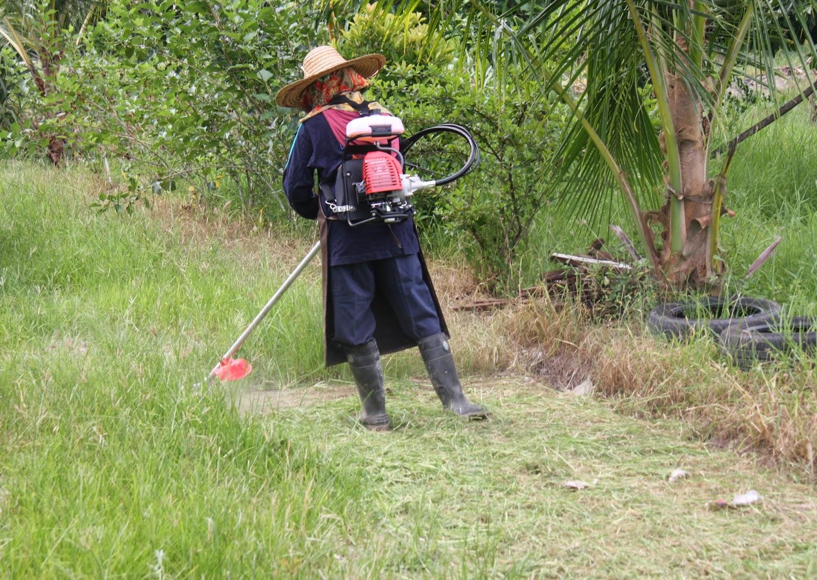 SantaiD'Rimba: Mesin Potong Rumput