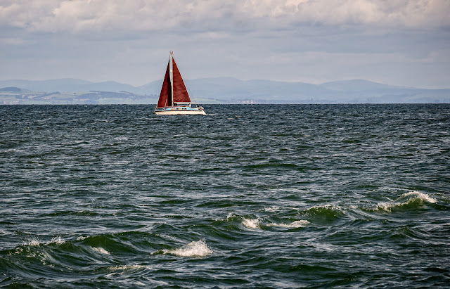 Photo of Flame on the Solway Firth