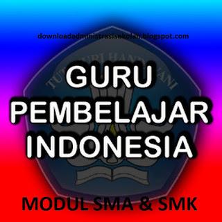 Modul Guru Pembelajar Sosiologi SMA / SMK