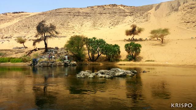 orilla del rio nilo desde el rio nilo