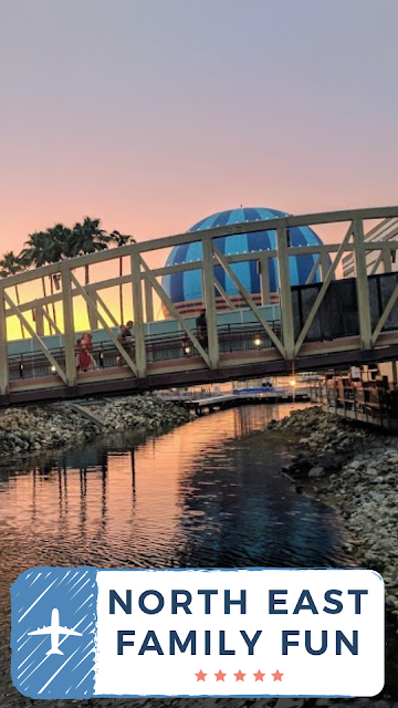 11 Things to do with Kids at Disney Springs Orlando, Florida