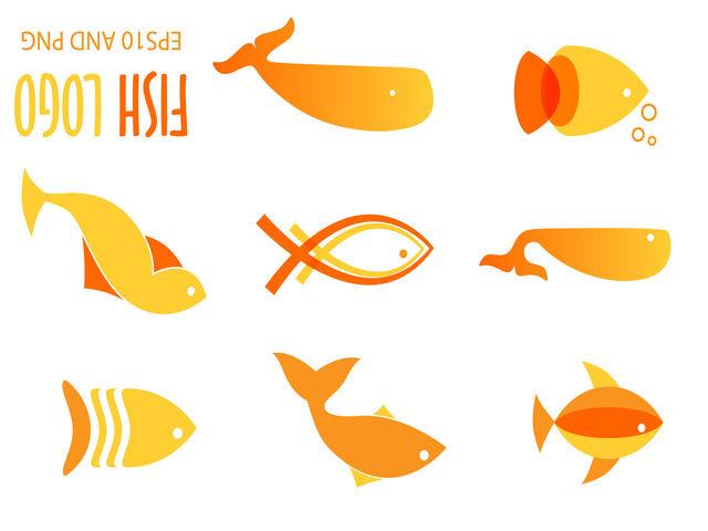 100 Gambar Logo Ikan Unik Warna Cantik Bisa Anda Download Gratis