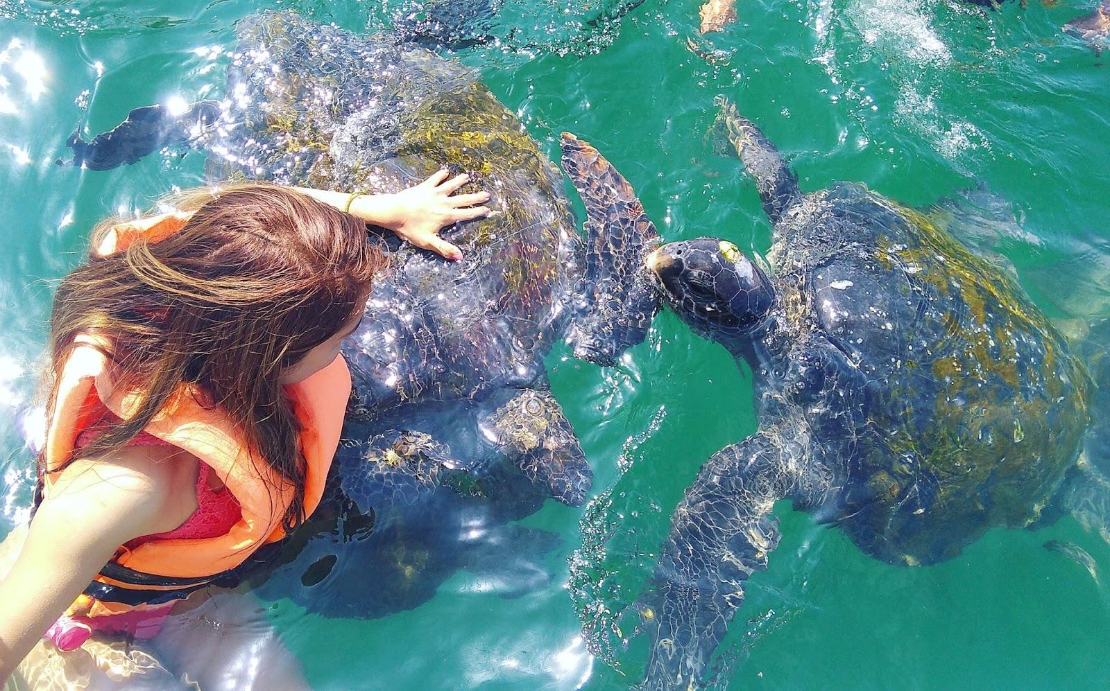 Nadar con tortugas en Piura