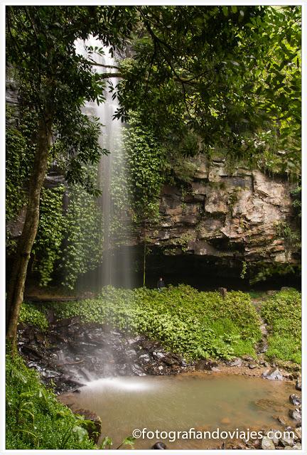 Crystal Shower Falls cascadas Dorrigo, Australia