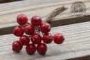 http://www.stonogi.pl/owoce-galazce-czerwone-srednica-j5802-p-22462.html