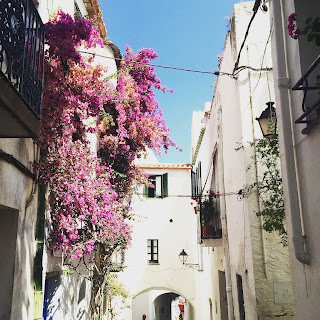 bougainvilliers cadaques