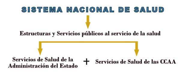 Celadores Online De Instituciones Sanitarias Estructura