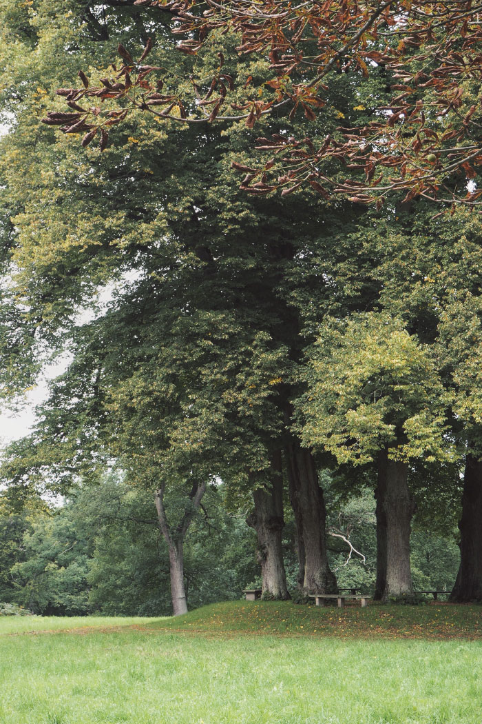 Parc du palais royal de Fredensborg au Danemark