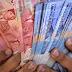 Analisa Keuntungan Budidaya Lele Per 1000 ekor