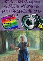 http://misiowyzakatek.blogspot.com/2013/08/motto-wyzwanie-foto.html