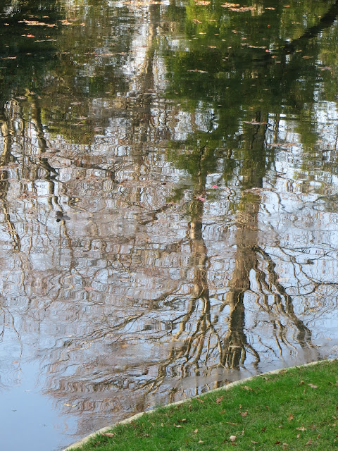 water reflections, lake