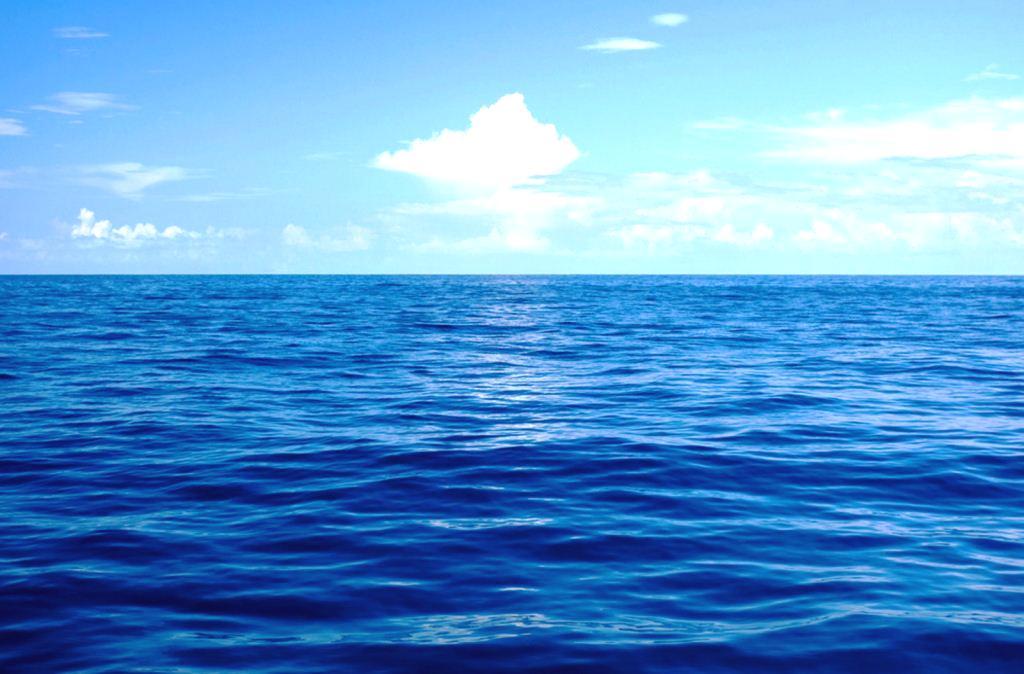 conheça mais um pouco sobre a água