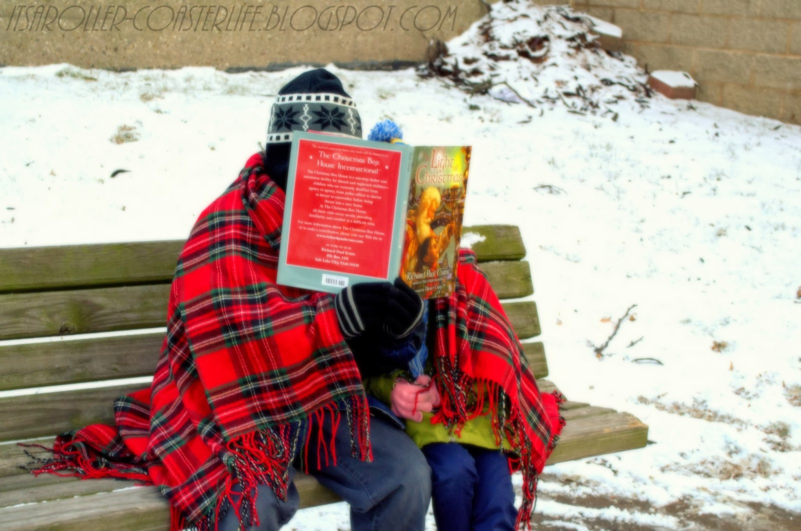It's A Roller-Coaster Life: Children's Book Review {Merry ...