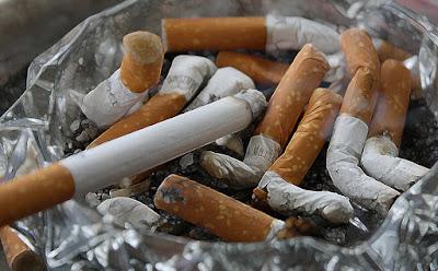 Uticaj duvanskog dima na pse