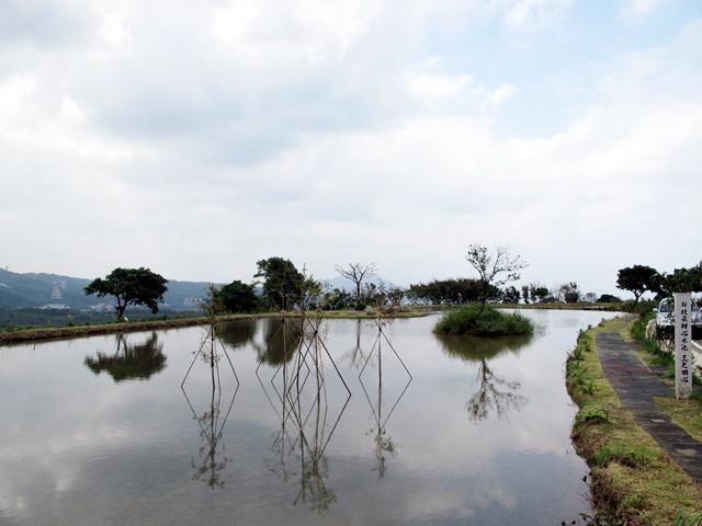 田心子水中央