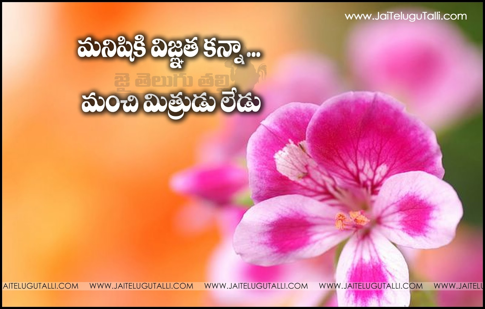 Inspirational Quotes About Friendship Top Telugu Quotes Friendship Quotations On Life Inspirational
