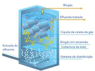 esquema processo funcionamento Reator UASB