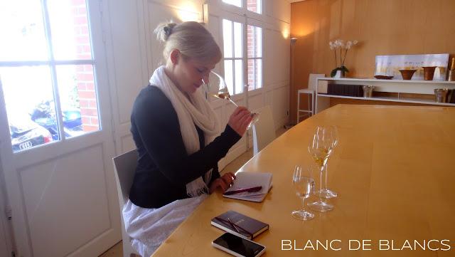 Paras viini ikinä - www.blancdeblancs.fi