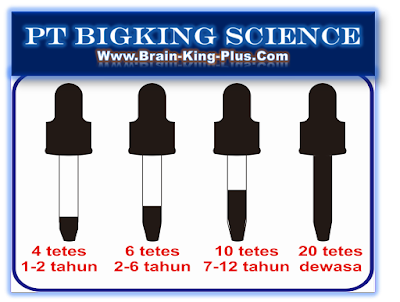 Brainking Plus Termurah, Brainking Plus Online, Brainking Onloine, Jual Brainking Online, Jual Brainking Plus Online, Pusat Brainking Plus Online, Order Brainking Plus Online, cara Beli Brainking