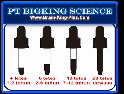 bRAINKKING pLUS