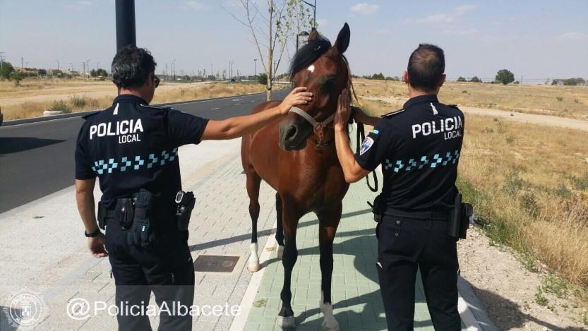 LO MISMO TE PLANCHAN UN HUEVO QUE TE FRÍEN UNA CORBATA; SON LA POLICÍA LOCAL DE ALBACETE