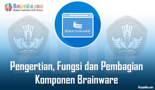 Pengertian, Fungsi dan Pembagian Komponen Brainware Menurut Para Ahli