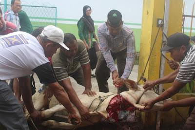Rayakan Idul Adha, Kemenag Tanjungbalai Sembelih 4 Hewan Kurban