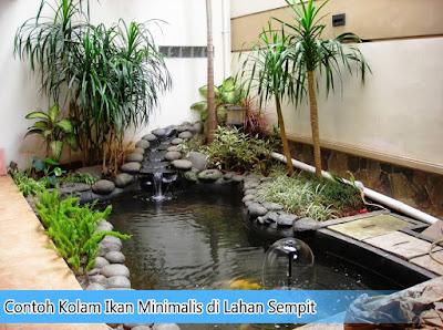 Contoh Kolam Ikan Minimalis di Lahan Sempit