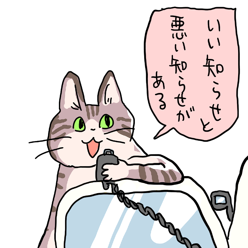 電話中、飼っている猫が鳴いて騒ぎますが、どうして? -電話で話してい- 犬 | 教えて!goo