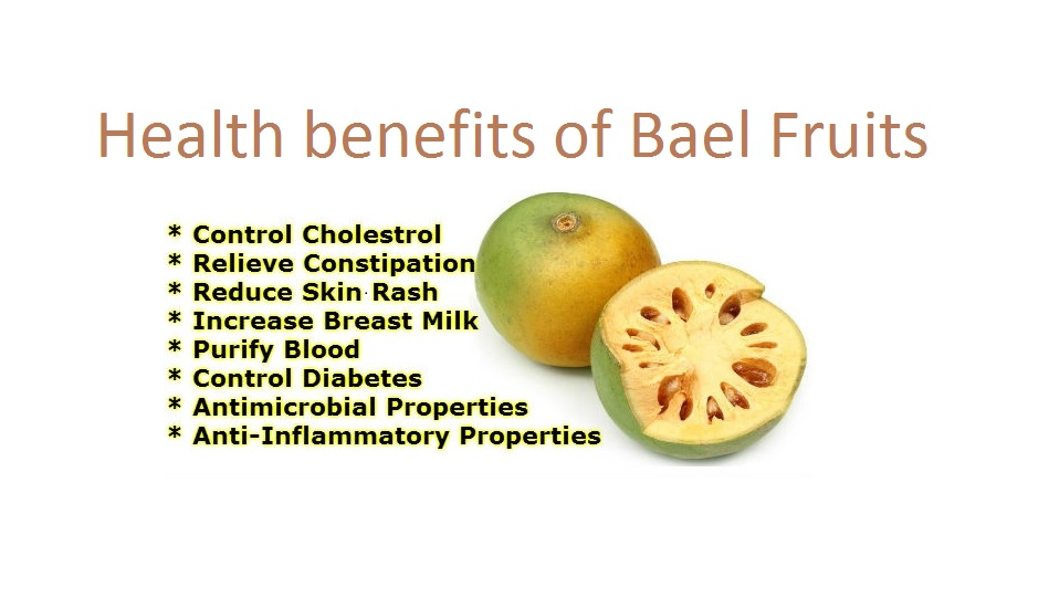 research paper on bael fruit Aegle marmelos l, commonly known as bael also bengal quince, golden apple,  japanese  please help improve this article by adding citations to reliable  sources  bael bael (aegle marmelos) tree at narendrapur w img 4116jpg  scientific classification  the bael fruit typically has a diameter of between 5 and  12 cm.
