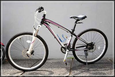 Harga Jual Sepeda Gunung Polygon Cleo 3.0