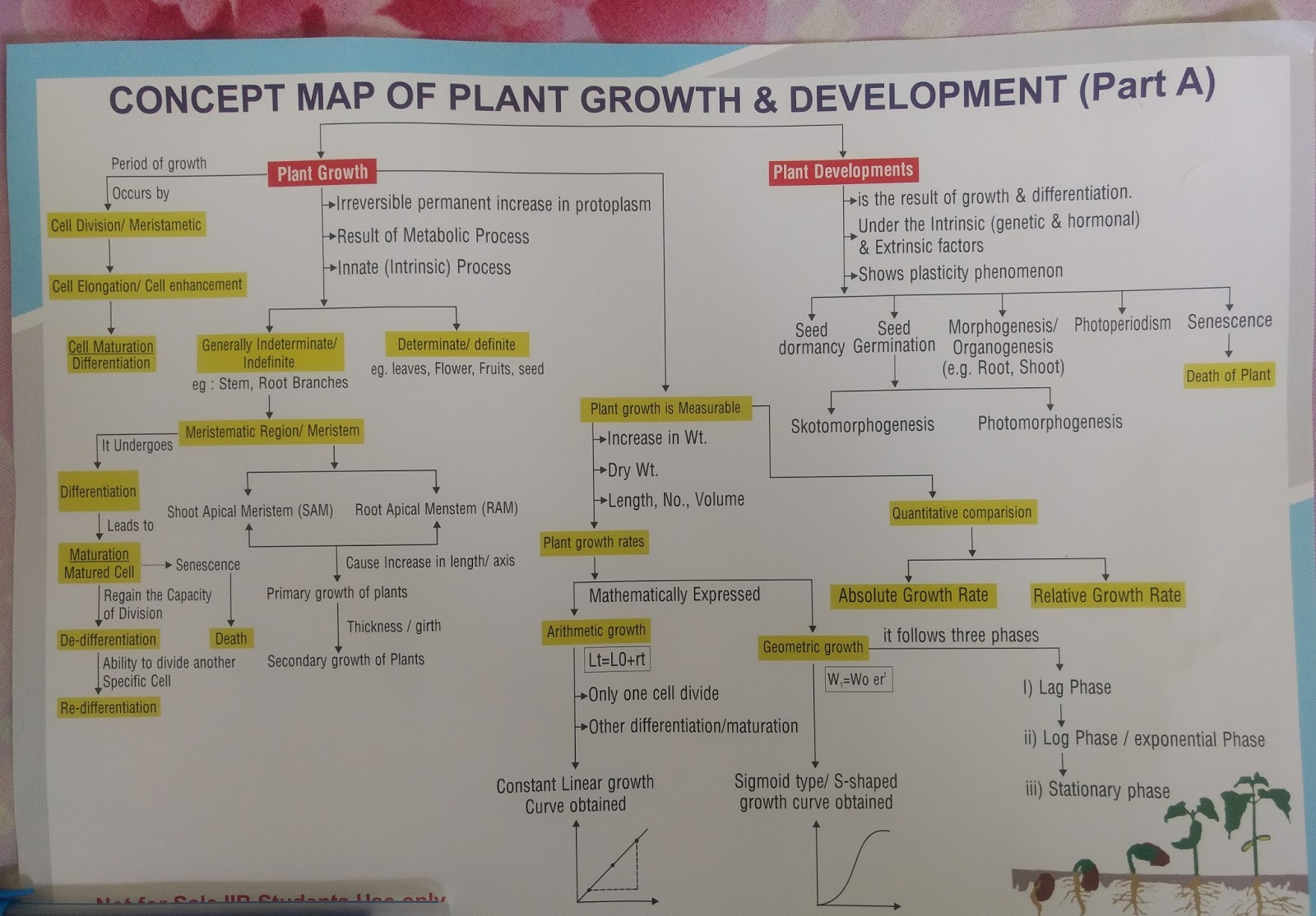 Hormone Concept Map.Neet Jee And Aiims Aspirants Concept Map Of Plants Growth And