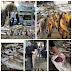 Gaza Palestina Banjir Ikan Segar, Laut dan Tanah yang benar-benar di Berkahi